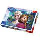 Trefl Disney Frozen 100 Piece Puzzle
