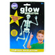 The Original Glowstars HUMAN Skeleton